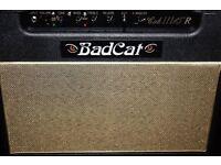 Bad cat cub 111 15R amp trade suhr pro