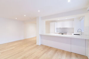 fully renovated downtown 2 bedroom apartment - brand new 4 1/2