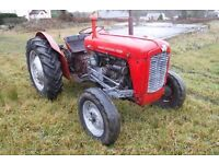 MASSEY FERGUSON 35X 1962 VINTAGE TRACTOR RUNS DRIVES FIXER UP SEE VIDEO CAN DELIVER NO VAT