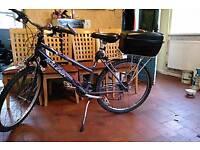 Raleigh Womens bike