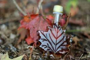 April 1 & 2, 2017: Maple Syrup Tours and fresh Maple Syrup!