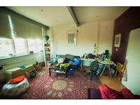 Huge glorious bright room with shower/toilet. Flat with 1 other.