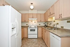 Laurelwood 3 bedrooms and family room (or 4th room) from Sep 1