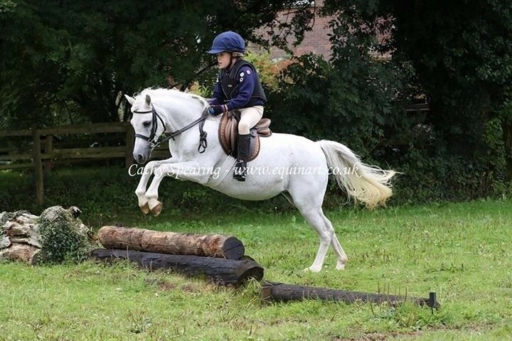 Jumping/Games Pony