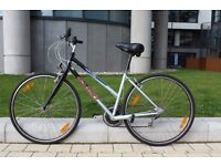 Bike for Sale Giant Hyde Park very good condition location polwarth City Centre