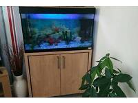 Fish tank & copboard