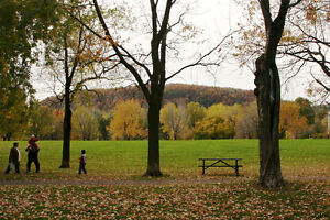 Great location: room in apt facing park Jeanne-Mance+Mountain