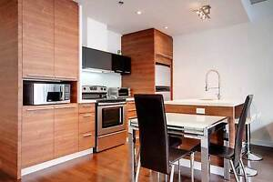 4 1/2 fully furnished 2 bed/2bath condo including utilities