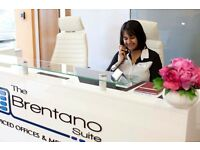 THE BRENTANO SUITE LUXURY SERVICED OFFICES AND MEETING ROOMS AND VIRTUAL OFFICES IN WHETSTONE N20