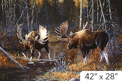 Majestic Moose Digital Print Panel Quilt fabric Cotton by Northcott