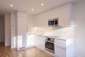 brand new renovated 2 bedroom suite in NDG near Monkland Village