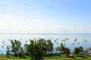 Junior 1 bedroom l Pointe-Claire | West Island |Spectacular View