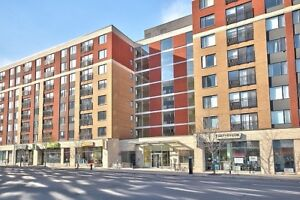 GRIFFINTOWN :2 CONDO WITH 2 BR + INTERIOR PARKING SEMI FURNISHED