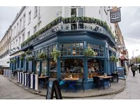 Bar Staff, Full time. Fun loving Gastro pub in the heart of Camden, £7.20 per hour!
