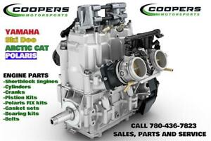 Snowmobile engines and parts 1-2days for all makes and models!