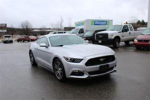 BRAND NEW 2017 MUSTANG | SAVE $10,000! 5L MANUAL