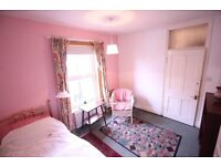 Charming spacious double room in West Norwood / Crystal Palace. All bills included.