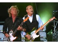 Status quo tribute band needs bassist