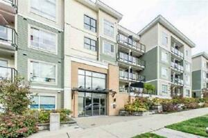 311 13789 107A AVENUE Surrey, British Columbia