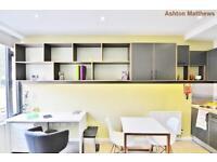 Studio flat in Paddenswick Road, Ravenscourt Park