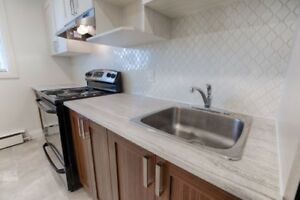 Fully Renovated 2 Bed East End Unit-1  Avail Now, &  Mar1st, 19!