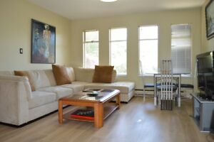Furnished Rooms in Ground Floor Vancouver Special on MAIN STREET