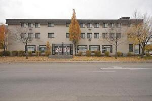 Beautiful Office Space or Showroom in downtown Cambridge (Galt) Cambridge Kitchener Area image 8