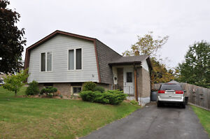 Great family home with updates galore! Kitchener / Waterloo Kitchener Area image 1