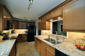 Great family home with updates galore! Kitchener / Waterloo Kitchener Area image 3