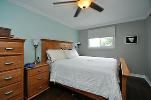 Great family home with updates galore! Kitchener / Waterloo Kitchener Area image 4