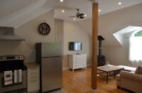 Newly Renovated Modern 1 bedroom