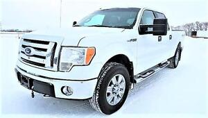 2009 Ford F-150 XLT SuperCrew Crew Cab 8 CYL - Max TOW PACKAGE!