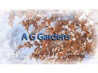 Garden Leaf removal clean up garden service