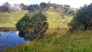 Affordable 34 Acres In Lush Noosa Hinterland Cooran Noosa Area Preview
