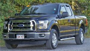 2015 Ford F-150 XLT (Low km's, Local trade!) Certfied Pre-Owned