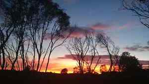 Lifestyle Acreage With Views In Noosa Hinterland Cooran Noosa Area Preview