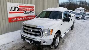 2013 Ford F-150 XLT/FX4/Lariat/King Ranch/Platine