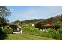 Charming Cottage, Sunny Secluded Garden & Views Of Pyrénées, Near Carcassonne, Aude Valley