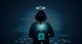 Are you interested in learning Ethical Hacking/Penetration Testing with me?