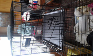 Dog crate small