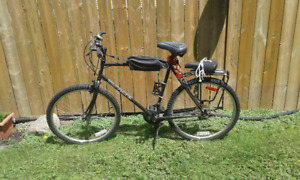 Triumph bicycle - good condition!