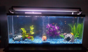 55 Gallon Tank for sale with accessories
