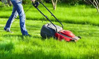 Lawn Mowing - no lawn is too large, too small, or too far