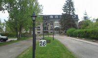 Avail July 1: 1-bdrm Apt $820/mth @ KW border (Hydro incl)