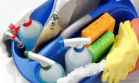 Affordable Quality Cleaning - Mississauga/Brampton $20/hr