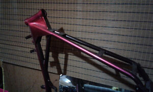 Aftermarket Harley frame and tranny