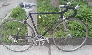 Gorgeous Bianchi Road Bike