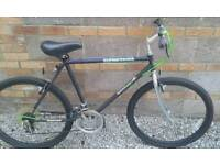 Black Bicycle Adult size perfect condition