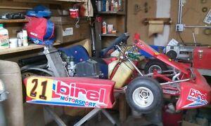 Go Kart  -birel-  avec  Rotax 125cc jr   (négociable)