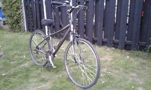 Vélo louis garneau limited édition